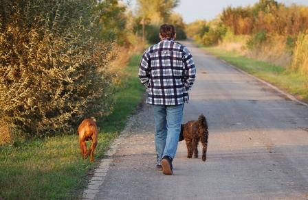 Tips for Mindful Walking