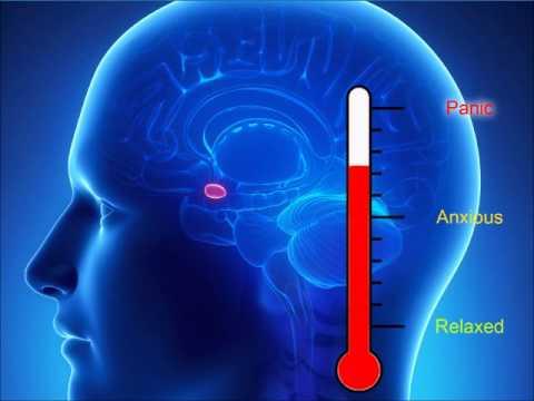 mindfulness-helps-with-anxiety-amygdala-hyjack